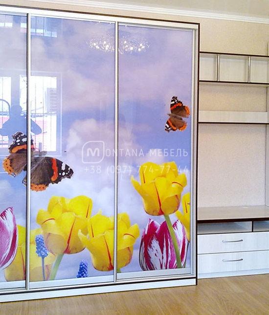 Шкаф-купе на заказ с фотопечатью Вита-Почтовая, рисунок на фасаде небо и цветы фото Белая Церковь